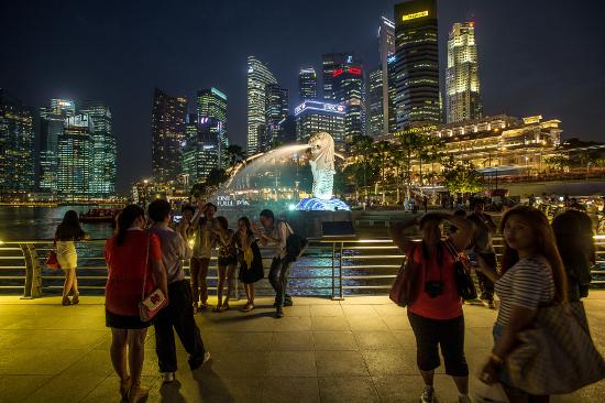 Auslandspraktikum in China, Singapur, Japan, Korea, sien