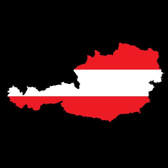 Auslandspraktikum in Österreich, Schweiz